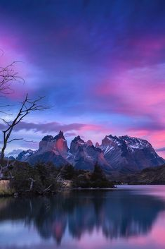 """ This Mortal Coil by Timothy Poulton """