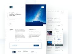 RAI Institute website design by Michał Smolec