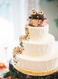 Rustic wedding cake with owls. Rustic Purple & Orange Virginia Wedding