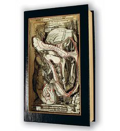 Brian Dettmer; book art