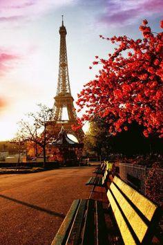 Autumn in France | Amalia 2112 ᘡղbᘠ