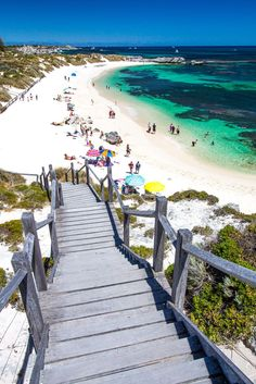 Rottnest Island - one of the best places to visit in Australia, near Perth in WA. Tips inside!