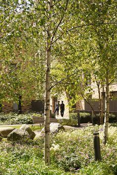 3-Semi-Private-courtyard-2-copyright-Townshend-Landscape-Architects « Landscape Architecture Works | Landezine