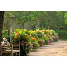 Come visit 220 acres of spectacular landscaping at Gibbs Gardens, we are open from 9 am to 5 pm Wednesday through Sunday.  #landscaping #gardening #Georgia #exploregeorgia #outdoors #parks #leisure #hiking #pickensprogress #flowers #nature #naturephotography #northgeorgia #discoveratl #discovergeorgia #discoverglobe #gibbslandscape #gibbslandscaping  #atlantaxplrr #landscapeplanet  #nature #landscape #naturelover #wandernorthga #danpoolprogress #gaconservancy #thisismyga #atlantatrails…