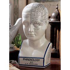 Design Toscano Inc 12H in. Porcelain Phrenology Head Statue - SP020