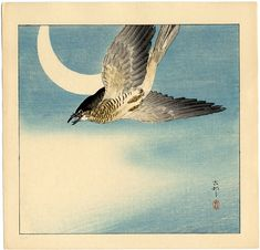 Cuckoo in Flight, Crescent Moon