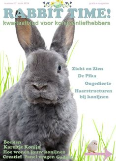 Lente 2014  e- magazine Rabbit Time! www.rabbittime.nl