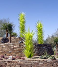Dale Chihuly's glass installation at the Desert Botanical Garden Phoenix