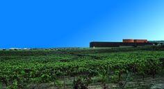 Quinta do Portal - Guided Wine Tour & Wine Tasting in Douro