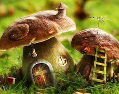 Mushroom homes for the Faeries
