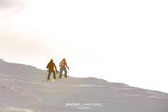 Anfänger Skitour in der Zillertalarena mit dem Bergführer von Alpindis.at www.alpindis.at Berg, Camel, Animals, Animales, Animaux, Animal, Animais, Dieren