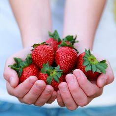 Que alimentos podemos consumir para mantenernos hidratados en invierno y en verano?