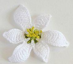 beyaz çiçek motifi