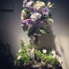 lilac tone