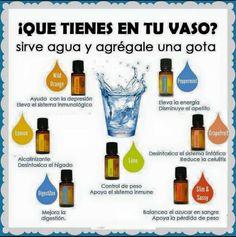 Hidrata tu cuerpo tomando al menos 2 litros de agua diaria, y maximiza los beneficios agregando aceites esenciales dōTERRA al agua