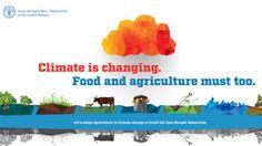 O clima muda. A alimentação e a agricultura também