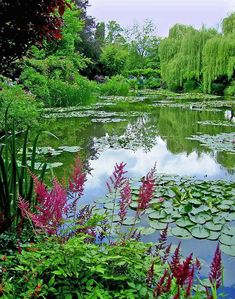 The Garden of French Impressionist painter, Claude Monet. This garden inspired so many of his paintings. Beautiful Landscapes, Beautiful Gardens, Monet Garden Giverny, Magic Garden, Giverny France, Gardens Of The World, Famous Gardens, Water Garden, Garden Pond
