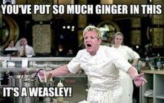 Omg Gordon Ramsey meme!!!