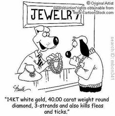 Even pets love jewels!