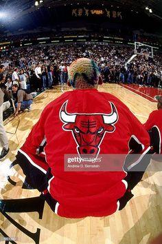 Fotografia de notícias : Dennis Rodman of the Chicago Bulls stretches out. Dennis Rodman, Nba Sports, Sports Memes, Nba Players, Basketball Players, Michael Jordan Wallpaper Iphone, Chicago Bulls Tattoo, Bulls Wallpaper, Nba Bulls