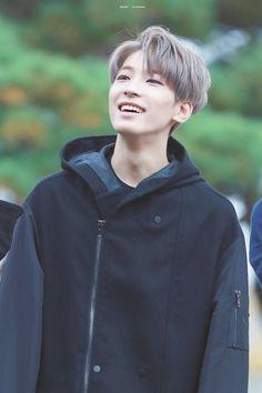 wonwoo | seventeen
