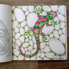 Magical Jungle lizard