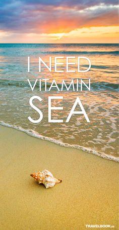 HCchloe I need vitamin sea