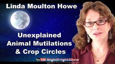 Linda Moulton Howe Animal Mutilations Crop Circles Videos Night Fright S...