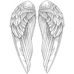 Angel Wings Pictures: Pictures of Angel Wings - Polyvore