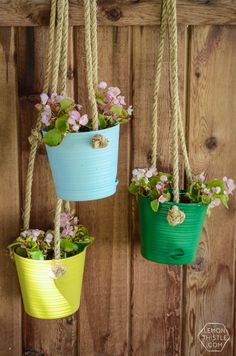 DIY Hanging Planters for the Patio: Home Depot Gift Challenge - Lemon Thistle