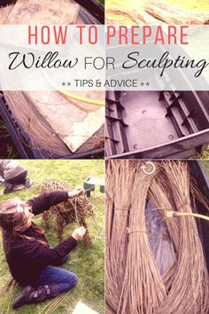 How to prepare willow for Sculpting tips and advice