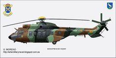 helicopter COUGAR FAMET