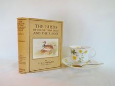 The Birds of the British Isles and their Eggs by TA Coward / 1950 8th Ed, 2nd Series Frederick Warne Ltd / 203 Superb Coloured Illustrations by BumperBoxofDelights on Etsy