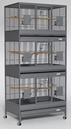 Avian Adventures is a manufacturer of premium quality powder coated and stainless steel bird cages. Big Bird Cage, Large Bird Cages, Cages For Birds, Bird House Plans Free, Bird House Kits, Macaw Cage, Pigeon Cage, Bird Cage Design, Pigeon Loft