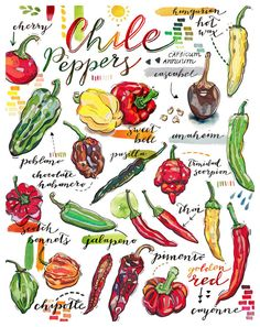 Chile peppers print. Chili. Garden. Food illustration. Kitchen decor. Spring. Gardening. Earth. Organic. Spicy. Homegrown. Healthy. Grow. Office Art