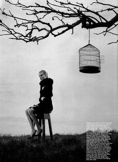 Black Branch Cage