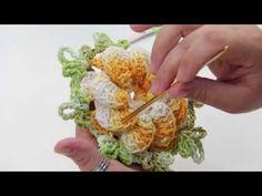 flor de gomo