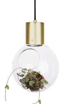 Ellos Home Fönsterlampa Fönsterlampa designad med snedskuren öppning i glasgloben. Den platta botten gör den perfekt även som bordslampa. Endast fantasin sätter stopp för vad du vill belysa inne i glaset. Borstade mässing/krom/mattsvarta detaljer. Lampans höjd 30 cm, Ø 20 cm. och svart textilsladd med strömbrytare och väggkontakt, sladdlängd 3,5 m.  Liten sockel E14. Max 40 W.<br><br>Ljuskälla ingår ej. Olika typer av ljuskällor kan ha stor påverkan på stil och utseende hos lampan. Prova…