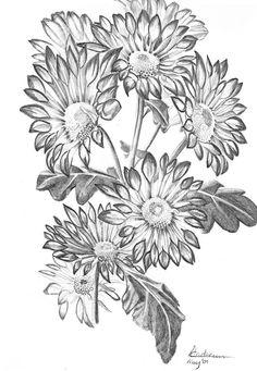 Chrysanthemum tube petals by tonyarama on deviantART