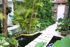 Bali Garden, Small Garden Landscape, Garden Landscaping, Gardens, Mini, Plants, Planters, Balinese Garden, Tuin