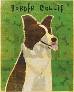 Border Collie Posters & Art Prints by John Golden - Magnolia Box