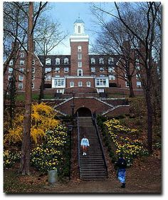 Bryan Hall, Ohio University. My husband proposed to me here on these stairs <3
