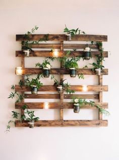 15 Indoor Garden Ideas for Wannabe Gardeners in Small Spaces - Dekoration Ideen Sweet Home, Palette Diy, Wood Palette Wall, Wood Palette Ideas, Diy Casa, Home And Deco, Wooden Pallets, Wooden Pallet Ideas, Recycled Pallets