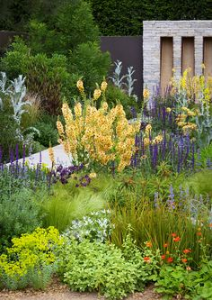 colour / landscape, landscaping, plant combination and complements / repinned on toby designs