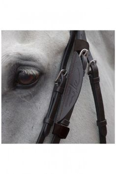 Find the essential bridle accessories that are next near impossible to find. Here at Tailored Equestrian we love gadgets such as Blinkers, Gag Ropes and Hackamore Cheekpieces.