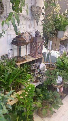 Flower shop Ikivihreä