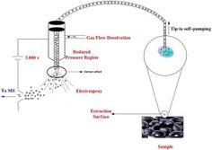 #IJMS: Venturi Elect