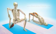 the daily banda - site that breaks down yoga poses by muscle group #yogaheadstand #YogaPosesandStretches