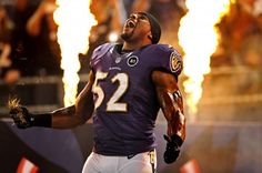 Ray Lewis and the Baltimore Ravens are going to the 2013 superbowl!!!!!!!! Ray's last ride!!!