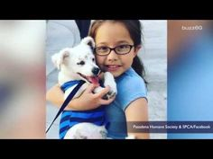 A 10-Year-Old is Teaching her Deaf Puppy Sign Language - YouTube